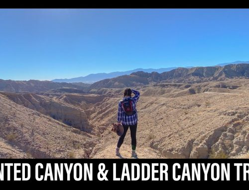 Hiking | PAINTED CANYON & LADDER CANYON TRAIL (Mecca, CA) | Exploring with Leah