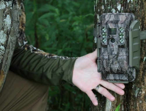TRAIL CAMERAS WERE JUST BANNED HERE